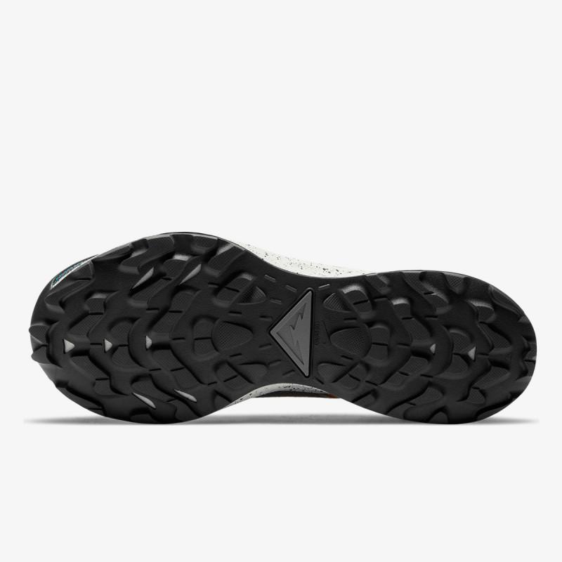 NIKE Pantofi sport NIKE PEGASUS TRAIL 2 GTX TH